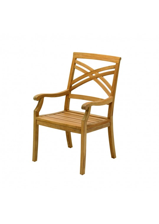 Halifax Dining Chair w Arms-Canvas Cushion-In Stock (Last One!)