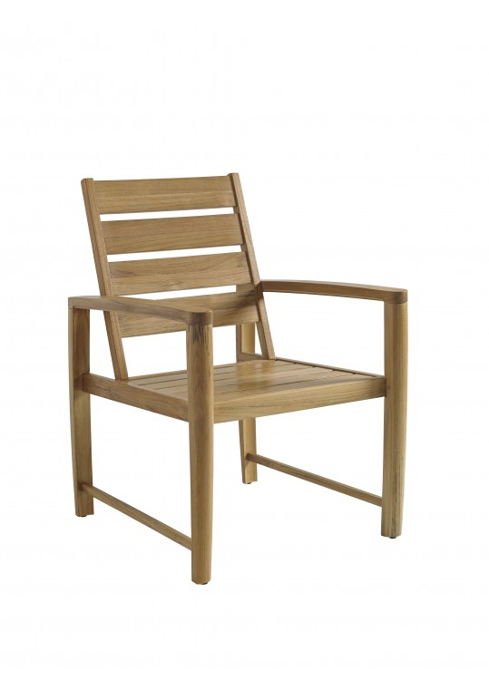 Oyster Reef Dining Arm Chair - BUFFED
